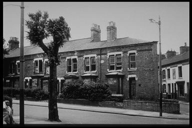 A picture of a row of terraced houses on a gently rising hill. A pollared tree is on the corner