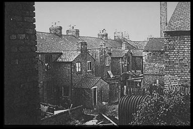 A picture looking down into the back gardens of a row of terraced houses