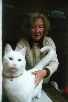 A picture of a white cat and a woman stroking it
