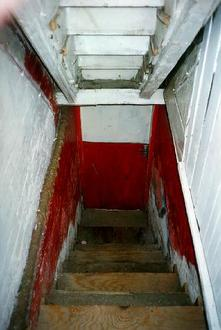 A picture of a set of stairs leading down.